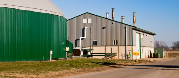 The Anaerobic Digestion 2